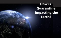 How Quarantine is Impacting the Environment