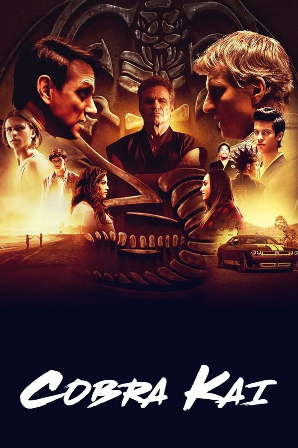 Cobra Kai: To Watch or Not to Watch